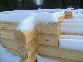 Сруб из лафета ручной рубки, зимний лес